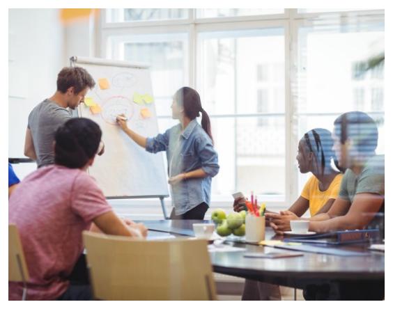 PMG Develops Implementation Plans for Strategies We Develop